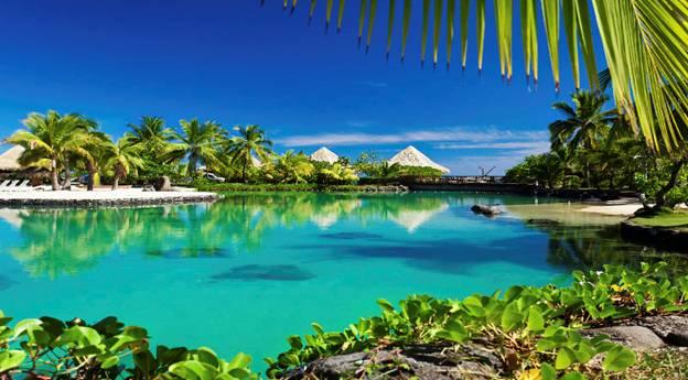 حجز فنادق جزيرة جورايدو